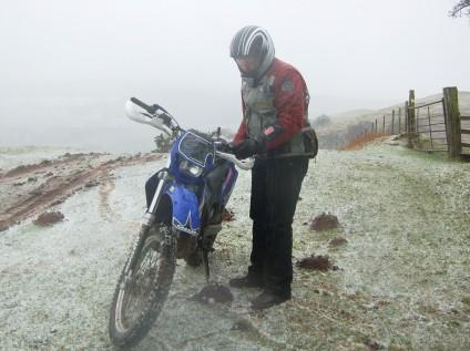 Dale blizzard