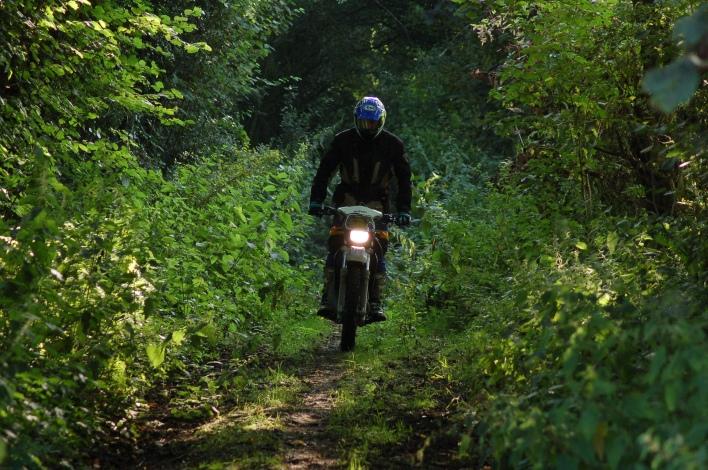 Ken secret trail